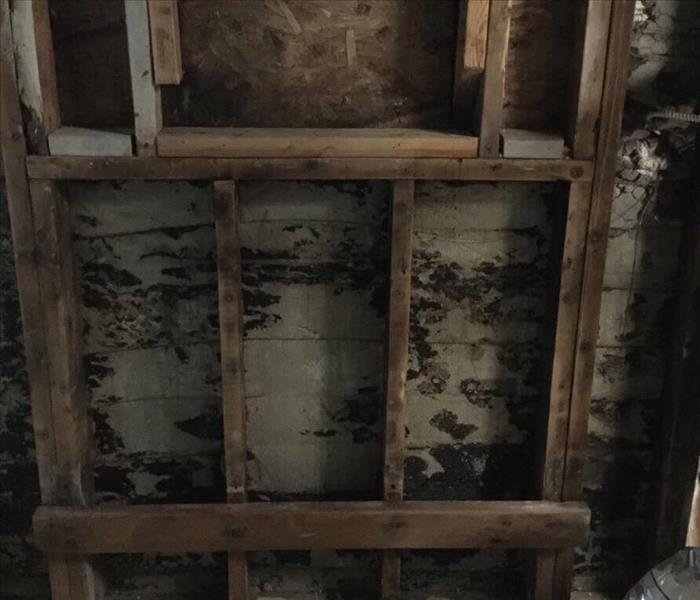 Mold Can Hide Inside Walls