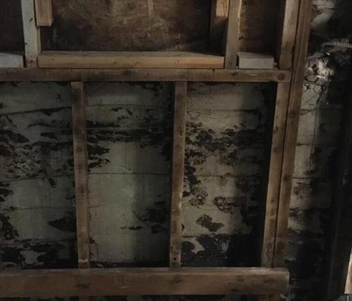 Mold Remediation Turlock - Mold Can Hide Inside Your Walls
