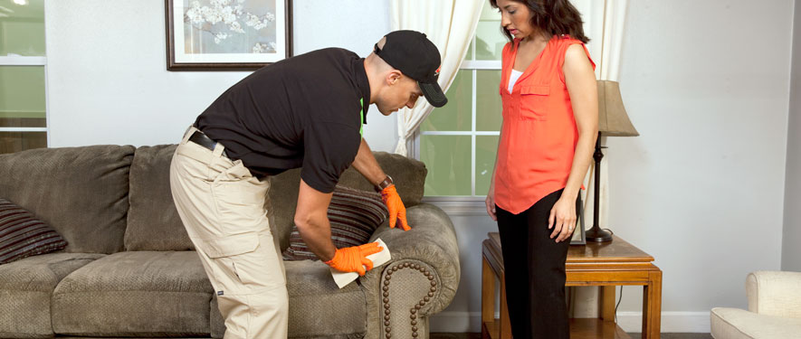 Turlock, CA carpet upholstery cleaning