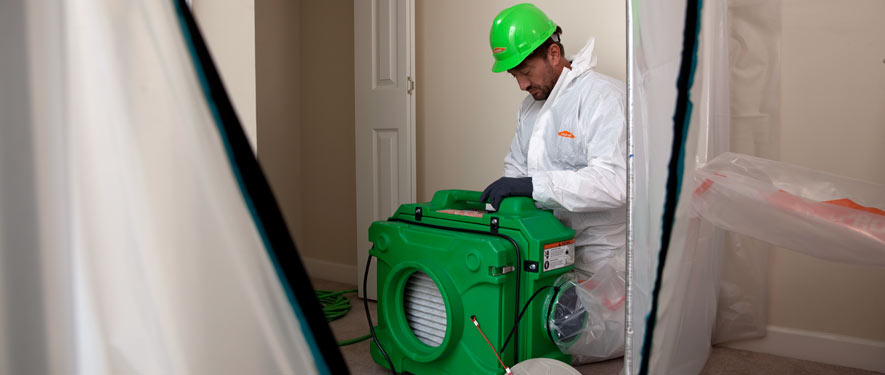 Turlock, CA mold cleanup